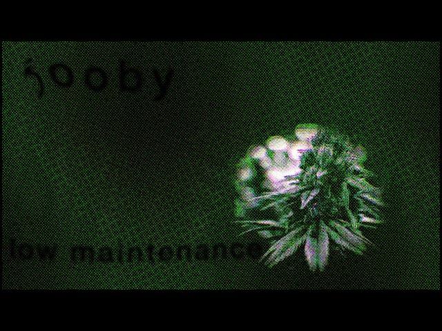 jooby 203: low maintenance