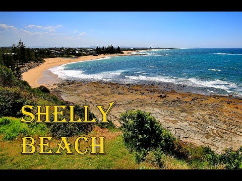 Shelly Beach Sunshine Coast