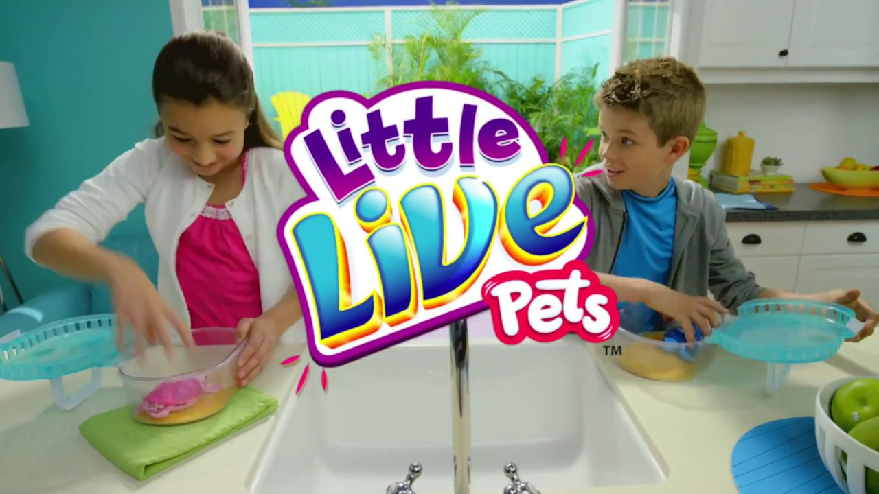 Character - Little Live Pets Turtles - YouTube