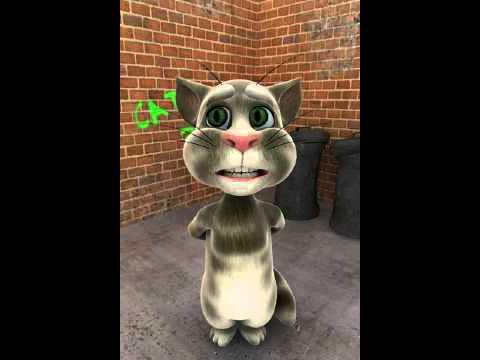 Tom Cat : Singing HAPPY BIRTHDAY