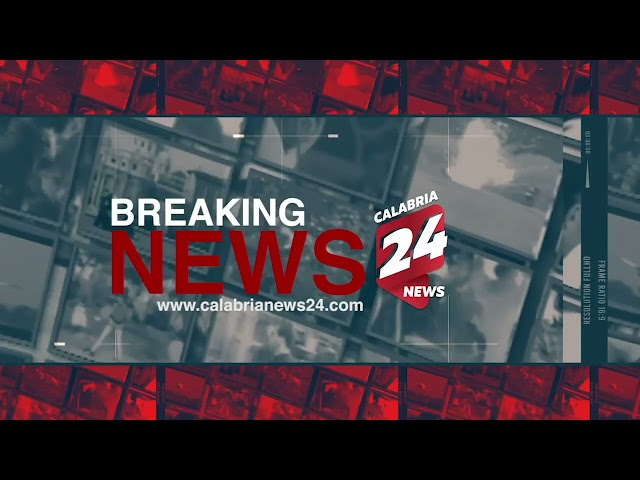 Le Breaking News di Calabria News 24