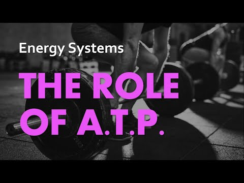 The Role of ATP | Energy Systems 01 | Anatomy & Physiology