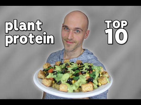 10 Plant Based Protein Sources You Should Try