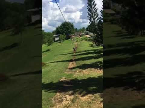 Enjoy play swing