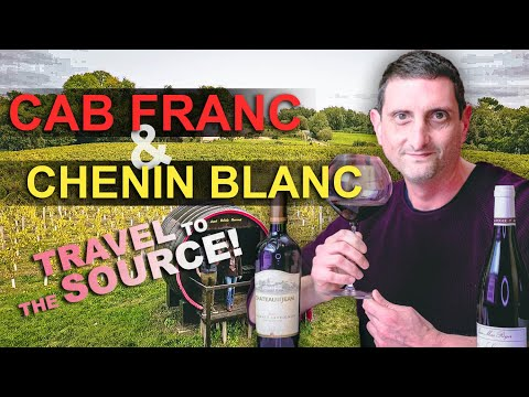 The WINE LOVER's Loire Valley Guide! - Finding the Source of Cabernet Franc & Chenin Blanc! (France)