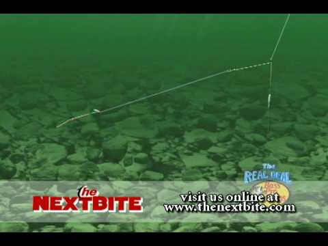 WalleyeFishingSecretscom - Tips for Fishing with Bottom