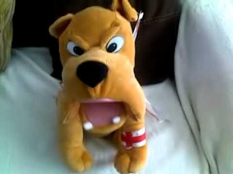 Bulldog singing the British national anthem
