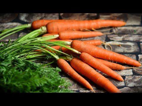 Лучший способ посадки моркови без прореживания.#морковьбезпрореживания#лёгкийспособпосадкиморкови# | посевморкови | сеемморковь | клейстер | посадка | морковь | крахмал | деревня | семена | огород | всходы