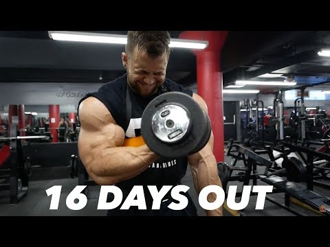 BODYBUILDING MOTIVATION - REGAN GRIMES 16 DAYS OUT