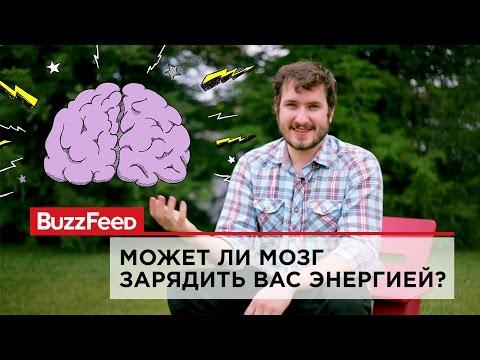 Может ли мозг