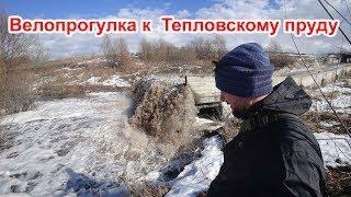 Мутные воды Тепловского пруда.