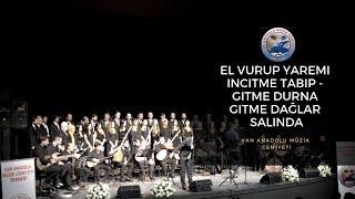 VAN ANADOLU MÜZİK CEMİYETİ - El Vurup Yaremi İncitme Tabip - Gitme Durna Gitme Dağlar Salında