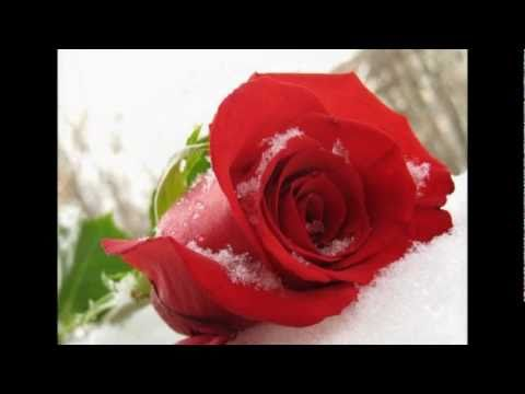 клип на песню зима холода андрей губин