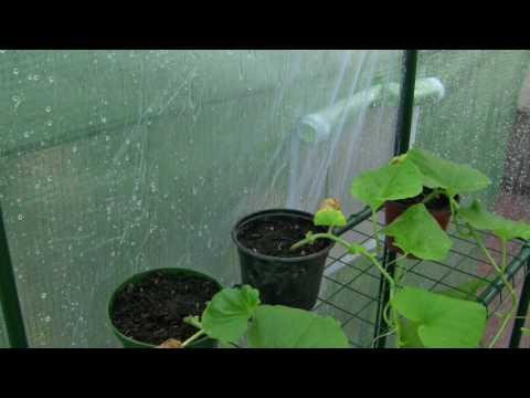 Pluie et orage léger au Jardin sous toit (serre) 2 heures - Rain sounds Garden roof (2 hours) - ASMR