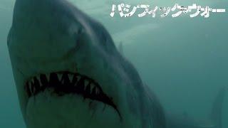 恐怖の人喰いザメ! 映画『パシフィック・ウォー』 特別映像