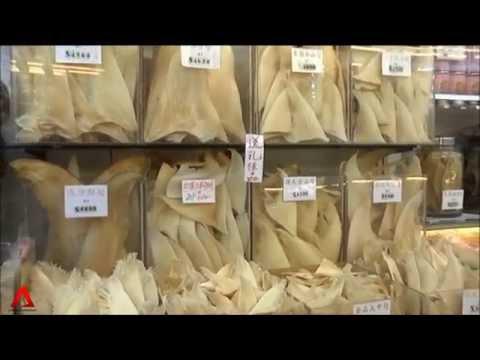 CHINA: Corruption clampdown hits HK luxury food market