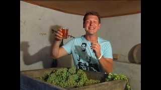 Секреты грузинского виноделия | Ртвели