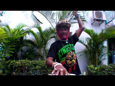 "Lee ""Scratch"" Perry + Subatomic Sound System 