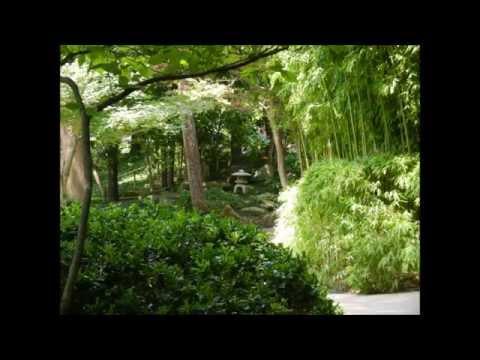 Fort Worth Japanese Gardens Walking Tour