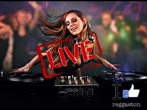 I like Reggaeton Radio • 24/7 Music Live Stream | Best Reggaeton 2017