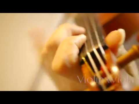 """Peace Sign"" - Boku no Hero Academia (Violin Cover)"