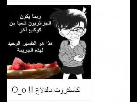 يا قوم الدلاع (البطيخ)في حالة صعبة Hqdefault