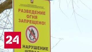 Шашлычники атакуют парки и заповедники: где нельзя жарить мясо?