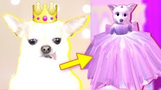 Transformer NOTRE DOGS en PRINCESSES! Roblox Royale High avec iamSanna