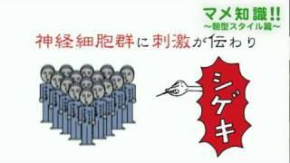 イメファクTV_HP http://www.image-factory.asia/ イメファクTVが届...