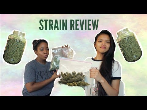 Trying new buds // strain review // white widow // purple candy