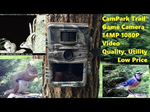 Campark Trail Camera 14MP 1080P T70 Review and Test