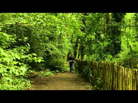 Wildlife conservation at Sydenham Hill Wood in London, with London Wildlife Trust