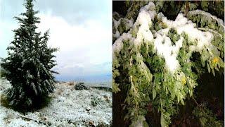 Погода в Греции в январе. Погодный феномен и снег в Афинах. Греция (Mila MyWay)(Снег в Афинах чрезвычайно редкое явление. Последний раз снег в Афинах выпадал в 2008 году. Где меня можно..., 2015-01-10T08:00:05.000Z)