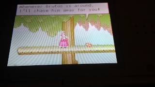 Nintendo DS - 12 dancing princesses