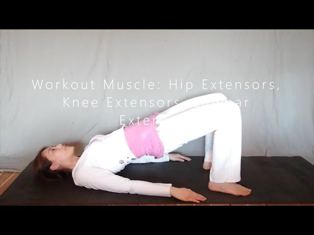 Bridge on The Floor - 5 Mins Exercise for Spine Rehabilitation & Physical Therapy