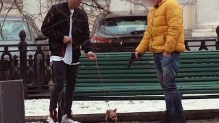 """Деньги Решают Всё: """"Убить"""" Собаку За Деньги. Prank. Kill a dog for money"""