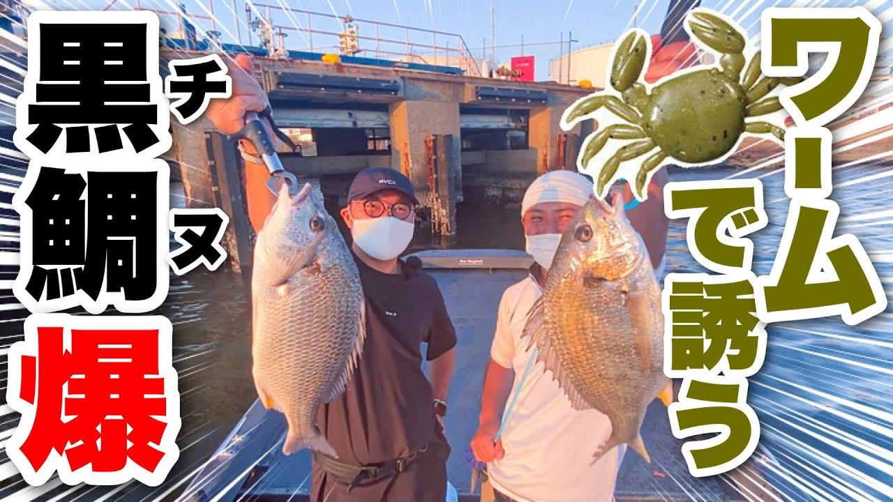 【病みつき⁉︎】ボートチニングが大阪湾で大流行?カニ型ワームで誘い出してみる!
