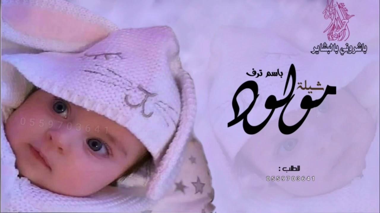 شيله مولوده باسم ترف 2021 شيلة مولوده حماسيه 2021 باشروني والبشار خيرن كثير Youtube