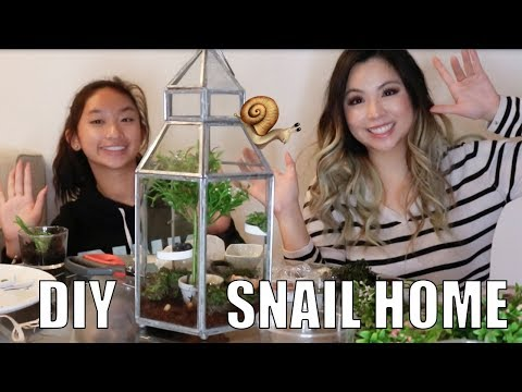 DIY HOUSE FOR MY PET SNAILS