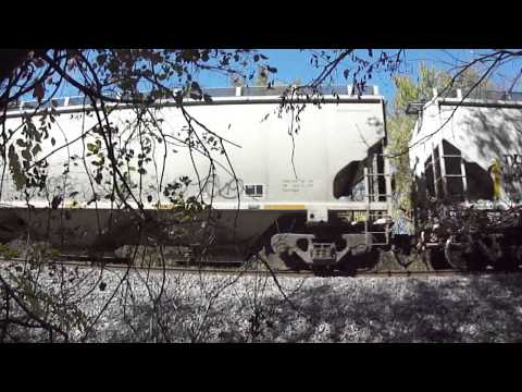 CN Freight Train in Millington TN