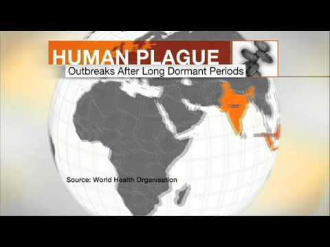 MADAGASCAR BUBONIC PLAGUE IN 60 SEC - BBC NEWS