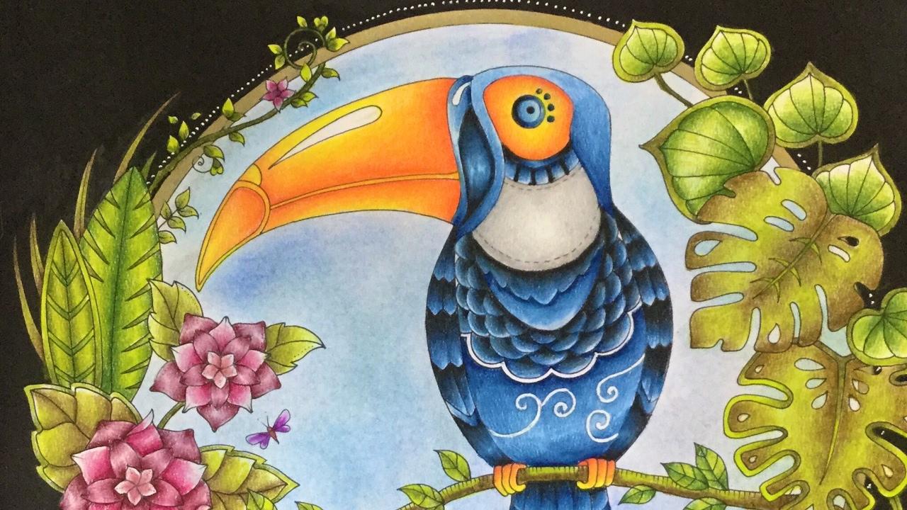 Magical Jungle By Johanna Basford Prismacolor Pencils