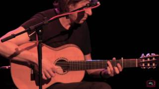 Dominic Miller - Fields of Gold HD