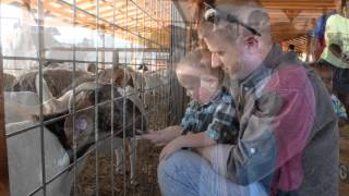 Petting Farm in Dallas Area - Preston Trail Farms