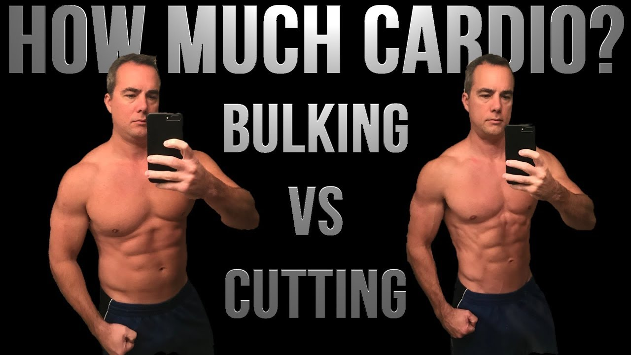 How Much Cardio To Build Muscle Or Burn Fat - YouTube