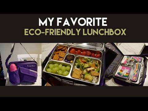 My Favorite Eco-Friendly Lunchbox
