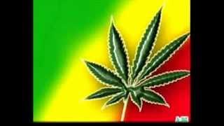 Yo Fumo Marihuana Desde Los 14