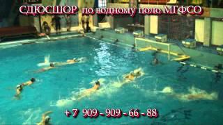 Водное поло 2009 11 Р DivX HD Москва МГФСО Раменское 1997г рож