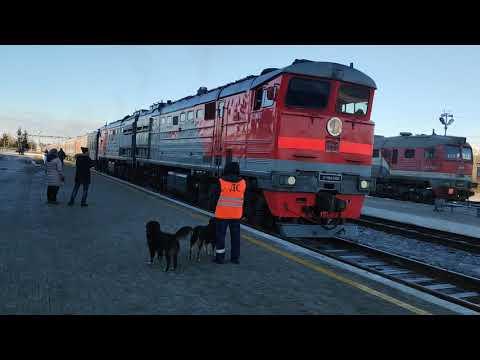 Прибытие поезда 98 Кисловодск - Тында на станцию Новая Чара