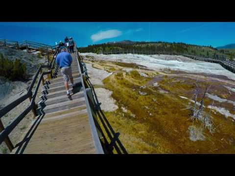 4K YELLOWSTONE PART TWO: LAMAR VALLEY & MAMMOTH HOT SPRINGS